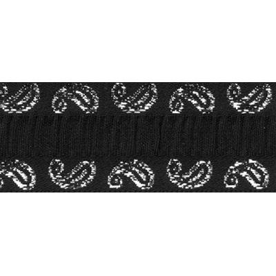 Лента жаккардовая  TRJ-30 23мм 10м черный/серебро