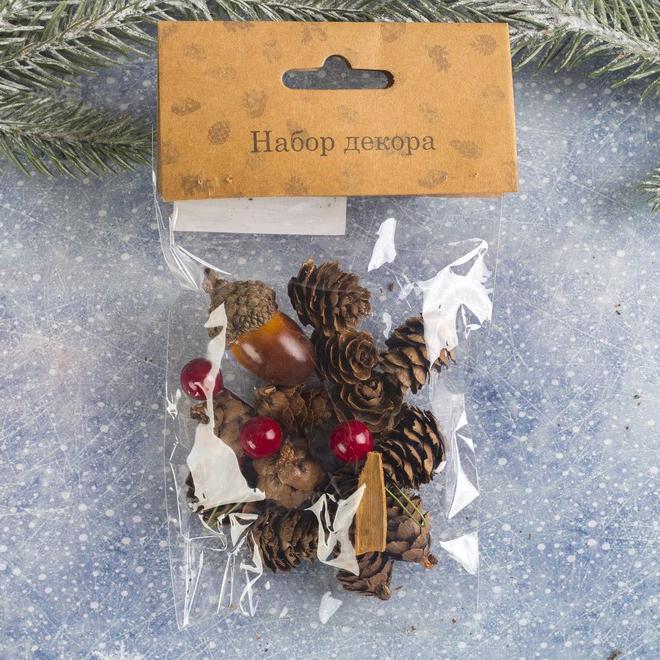 Набор новогоднего декора Пряные шишки WS-027 3608268